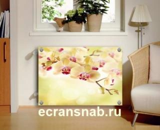 экран из акрилового стекла
